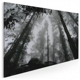 Leśne życie - zdjęcie na płótnie - 120x80 cm