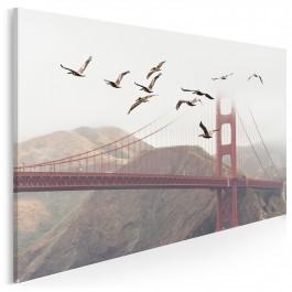Lot nad Golden Gate - fotoobraz na płótnie - 120x80 cm
