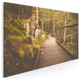 Kraina elfów - fotoobraz do sypialni - 120x80 cm