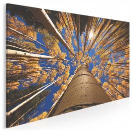 Rudozłoty las - zdjęcie na płótnie - 120x80 cm