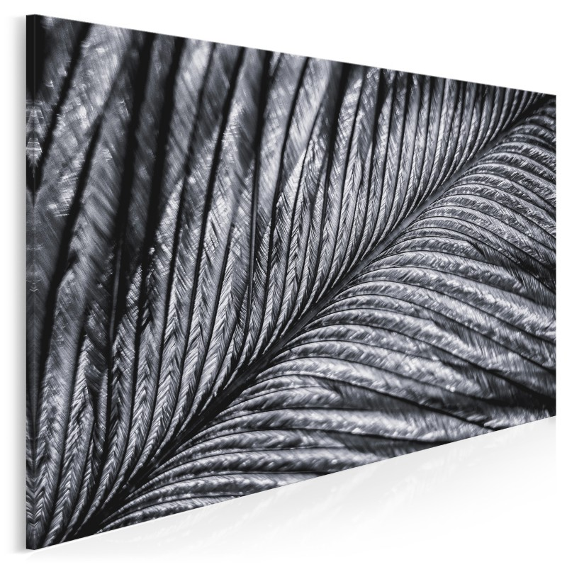 Srebrzysta zwiewność - fotoobraz na płótnie - 120x80 cm