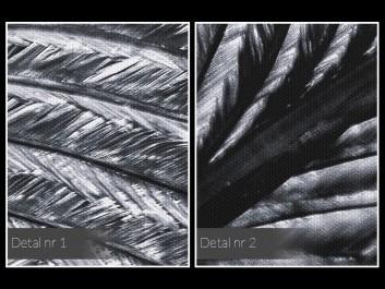 Srebrzysta zwiewność - fotoobraz na płótnie
