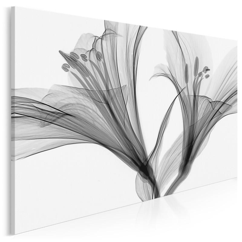 Lilly - fotoobraz do salonu - 120x80 cm