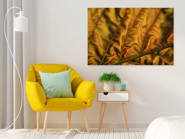 Velvet - fotoobraz na płótnie - 120x80 cm