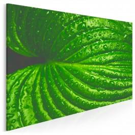 Aberracja - fotoobraz do salonu - 120x80 cm