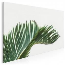Acapulco - fotoobraz na płótnie - 120x80 cm
