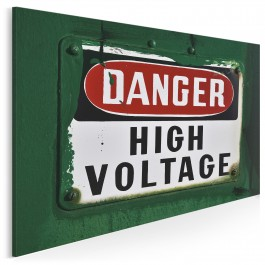 Danger - high voltage - fotoobraz do sypialni - 120x80 cm