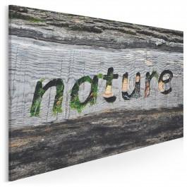 Nature - fotografia na płótnie - 120x80 cm