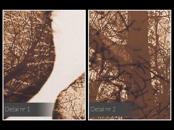 Antologia intymności - nowoczesny obraz na płótnie - 50x70 cm
