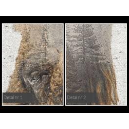 Głos puszczy - nowoczesny obraz na płótnie - 120x80 cm