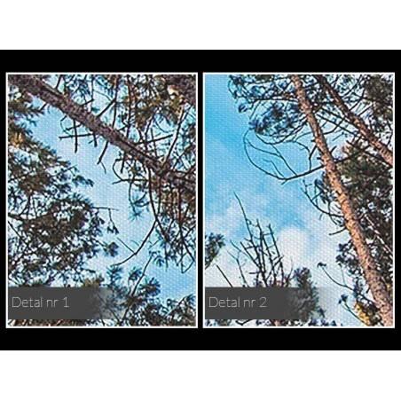 Lasem do góry - fotografia na płótnie - 120x80 cm