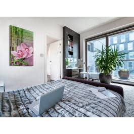 Królewska Orchidea - nowoczesny obraz na płótnie - 50x70 cm