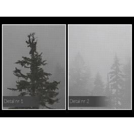 We mgle - fotografia na płótnie - 120x80 cm