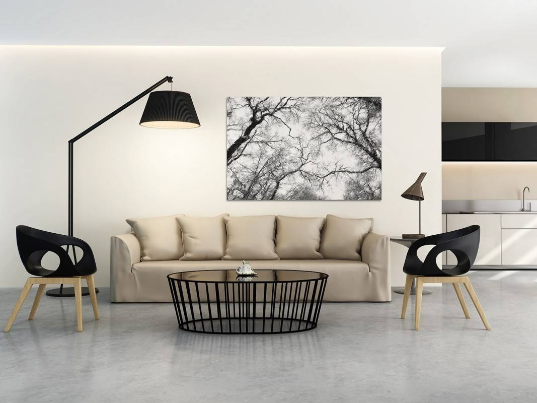 Eleganckie Ujęcie Natury Nowoczesny Obraz Do Salonu 120x80 Cm