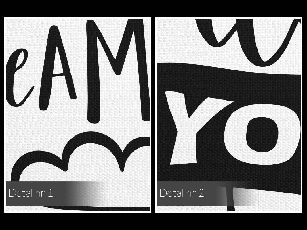 Follow your dreams - nowoczesny obraz do salonu - 50x70 cm